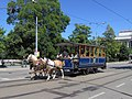 Brno, Rooseveltova, koňka č. 6.jpg