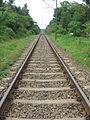 Broad Gauge Rail.jpg