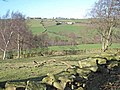Browney valley.jpg