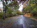 Bubeneč, Stromovka, promenádní cesta v horní části.jpg