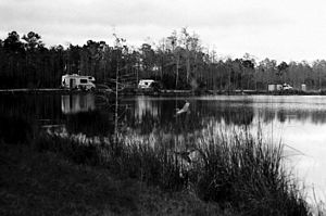 Big Cypress National Preserve - Burns Lake campground, one of Big Cypress' many seasonal camps designed mainly for R.V.s and ORVs.