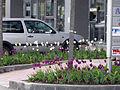 Business Park Sofia E52.jpg