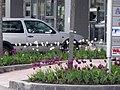 Business Park Sofia E52.jpg
