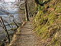 Buttermere Lakeside Path - geograph.org.uk - 1746555.jpg