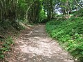 Byway to Timbold Hill - geograph.org.uk - 1291028.jpg