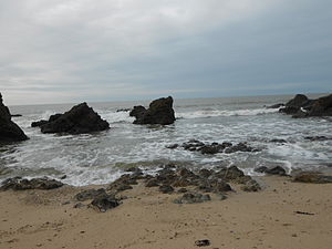 Côte d'amour - Wild coast of the Côte d'Amour (near Le Pouliguen)