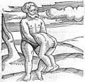C. Lycosthenes, Prodigiorum ac ostentorum chronicon. Wellcome L0030207.jpg