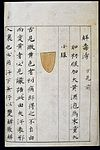 C14 Chinese tongue diagnosis chart Wellcome L0039599.jpg