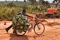 Cabbages and Bike, Uganda (15149306854).jpg