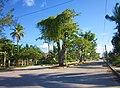 Calle en Huay Pix, Q. Roo. - panoramio.jpg