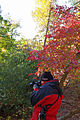 Camera and colors (6328687143).jpg