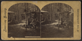 Camp scene in the Adirondacks, from Robert N. Dennis collection of stereoscopic views 2.png