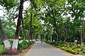 Campus Road - Bengal Engineering and Science University - Sibpur - Howrah 2013-06-08 9317.JPG