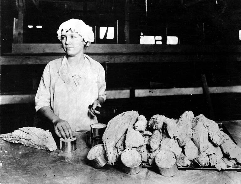 Cannery worker filling tuna cans, Los Angeles Cannery Co, Long Beach, Ca, nd (COBB 362).jpeg