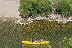 Canoeing on Tarn River 11.jpg