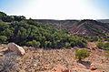 Caprock Canyon State Park (13300803634).jpg