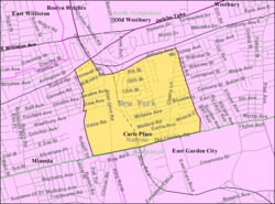 U.S. Census Map