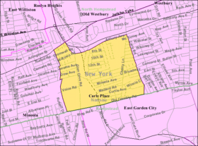 Carle-place-ny-map.png