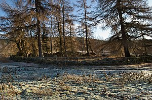 Clan Farquharson - Carn na Cuimbne or the Cairn of Memory is among the trees on the north bank of the river. It was here that the Clan Farquharson mustered their men and prepared for whatever battle they had been summoned to fight. Each man left a stone on the cairn and removed it when he returned. The stones which remained marked the number of those who had died.