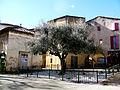 Carpentras vieil olivier.JPG