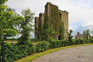 Cyclone Tini - Coolbanagher Castle before it partially collapsed during Tini and its subsequent demolition.