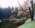 Catherine Park in october.jpg