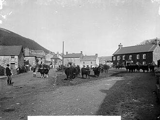 Tal-y-bont, Ceredigion - Cattle fair in Tal-y-bont circa 1885