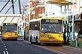 Cattley St buses.jpg