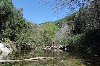 Cauce del Arroyo de Guadalora.JPG
