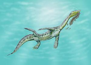 Nothosauridae - An impression of Ceresiosaurus eating a small aquatic animal