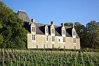 Château de la Cour-au-Berruyer, Cheillé 3.jpg