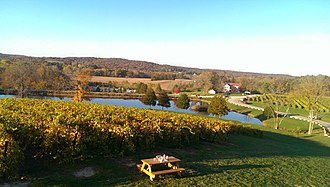 Missouri Rhineland - Chandler Hill winery in Defiance
