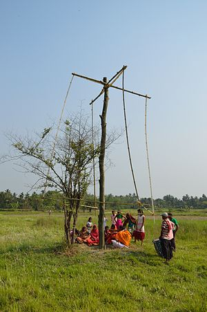 Charak Puja - Charak Puja is being performed at village Narna, Howrah. 14 April 2014.