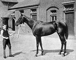 Chelandry British Thoroughbred racehorse