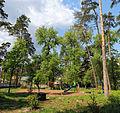 Cherkasy Sosnivka Park 13.jpg