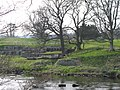 Chesters Roman Fort - geograph.org.uk - 809568.jpg