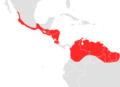Choeroniscus godmani map.png
