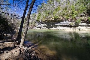 A photo of Clear Creek in early spring in William B. Bankhead National Forest