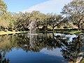 Clearwater,Florida,USA. - panoramio (51).jpg