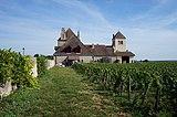 Clos de Vougeot Chateau de la Tour (2).JPG