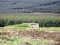 Cnoc nan airigh Forest Walk. - geograph.org.uk - 834465.jpg