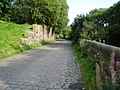 Cobbled road, Waterfoot - geograph.org.uk - 970353.jpg