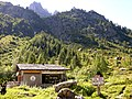 Col des Montets - chalet.jpg