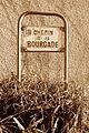 Colomiers - Chemin de la Bourgade - 20151206 (1).jpg