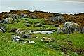 Colourful coastal scenery at NE side of Doe Castle - geograph.org.uk - 1184848.jpg