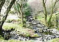 Confluence of the Meillionen and an unnamed stream by the bridle path bridge - geograph.org.uk - 394404.jpg