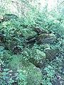 Cooper Marsh Conservation Area 27.jpg