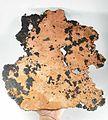 Copper-206337.jpg