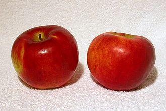 Cortland (apple) - Image: Cortland apples