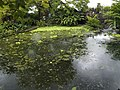 Costa Rica (6109889449).jpg